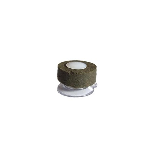 Grazer Suction Fixing Cup