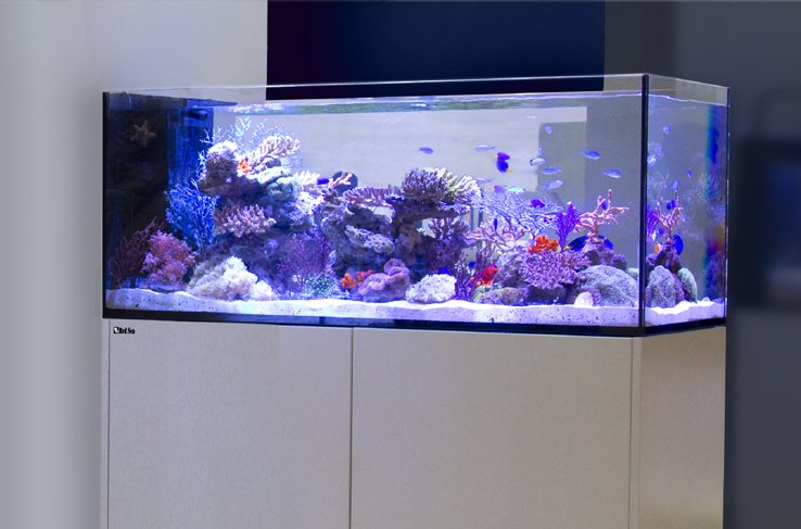red sea reefer 350 marine aquarium system